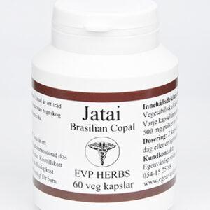 Jatai